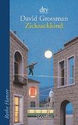 Cover-Bild zu Grossman, David: Zickzackkind