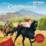 Cover-Bild zu Ostwind. Das Rennen von Ora & Das gestohlene Fohlen von THiLO