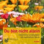 Cover-Bild zu Du bist nicht allein von Peschl, Tom (Komponist)
