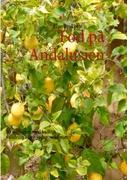 Cover-Bild zu Fod på Andalusien von Byskov, Else