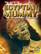 Cover-Bild zu The Life of an Egyptian Mummy (eBook) von Owen, Ruth