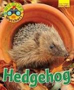 Cover-Bild zu Wildlife Watchers: Hedgehog von Owen, Ruth