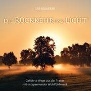 Cover-Bild zu Mauerer, Ilse: Die Rückkehr ins Licht
