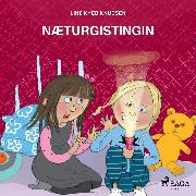 Cover-Bild zu eBook Næturgistingin