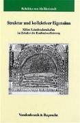 Cover-Bild zu von Mallinckrodt, Rebekka: Struktur und kollektiver Eigensinn