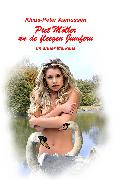 Cover-Bild zu Piet Möller un de fleegen Jumfern (eBook) von Asmussen, Klaus-Peter