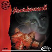 Cover-Bild zu Meteor Horror, Folge 5: Hexenkarussell (Audio Download) von Gutzeit, Sascha