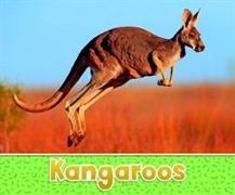 Cover-Bild zu Kras, Sara Louise: KANGAROOS