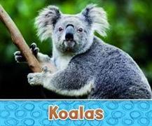 Cover-Bild zu Kras, Sara Louise: Australian Animals Pack A of 2