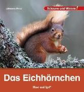 Cover-Bild zu Das Eichhörnchen von Prinz, Johanna