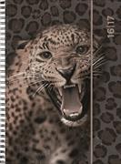Cover-Bild zu Animals daily A6 Leo 2016/2017