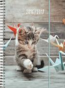 Cover-Bild zu Animals daily A5 Origami Kitten 2016/2017