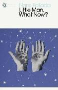 Cover-Bild zu Little Man, What Now? (eBook) von Fallada, Hans