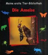 Cover-Bild zu Gomel, Luc: Die Ameise