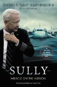 Cover-Bild zu Sullenberger, Chesley B., III: Sully [Movie TIe-in] UK