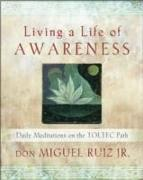 Cover-Bild zu Living a Life of Awareness von Ruiz, don Miguel, Jr