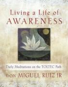Cover-Bild zu Living a Life of Awareness (eBook) von Don Miguel Ruiz, Jr