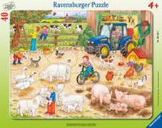 Cover-Bild zu Auf dem grossen Bauernhof