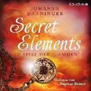 Cover-Bild zu eBook Im Spiel der Flammen