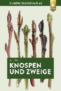Cover-Bild zu Knospen und Zweige