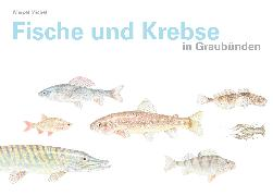 Cover-Bild zu Fische und Krebse in Graubünden