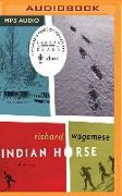 Cover-Bild zu Wagamese, Richard: Indian Horse