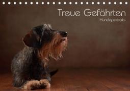 Cover-Bild zu Behr, Jana: Treue Gefährten - Hundeportraits (Tischkalender 2021 DIN A5 quer)