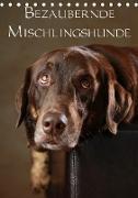 Cover-Bild zu Behr, Jana: Bezaubernde Mischlingshunde (Tischkalender 2021 DIN A5 hoch)