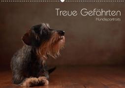 Cover-Bild zu Behr, Jana: Treue Gefährten - Hundeportraits (Wandkalender 2021 DIN A2 quer)