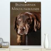 Cover-Bild zu Behr, Jana: Bezaubernde Mischlingshunde (Premium, hochwertiger DIN A2 Wandkalender 2021, Kunstdruck in Hochglanz)