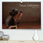 Cover-Bild zu Behr, Jana: Treue Gefährten - Hundeportraits (Premium, hochwertiger DIN A2 Wandkalender 2021, Kunstdruck in Hochglanz)