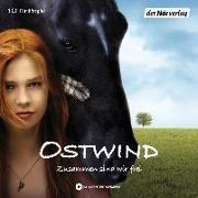 Cover-Bild zu Ostwind von Schmidbauer, Lea