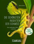 Cover-Bild zu Die schönsten Insekten der Schweiz von Marent, Thomas