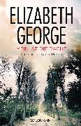 Cover-Bild zu George, Elizabeth: Mein ist die Rache (eBook)