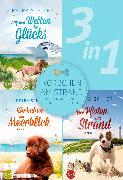 Cover-Bild zu Schier, Petra: Körbchen am Strand - drei bezaubernde Hundegeschichten (3in1) (eBook)