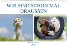Cover-Bild zu Bea Müller, Hundefotowerk: WIR SIND SCHON MAL DRAUSSEN - Was Hunde wollen (Wandkalender 2021 DIN A2 quer)