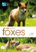 Cover-Bild zu Unwin, Mike: RSPB Spotlight: Foxes
