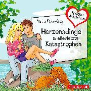 Cover-Bild zu Herzensdinge & allerletzte Katastrophen von Minte-König, Bianka