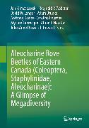Cover-Bild zu Aleocharine Rove Beetles of Eastern Canada (Coleoptera, Staphylinidae, Aleocharinae): A Glimpse of Megadiversity (eBook) von Langor, David W.