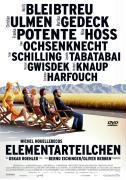 Cover-Bild zu Elementarteilchen von Roehler, Oskar