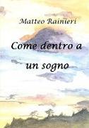 Cover-Bild zu Come Dentro a Un Sogno von Rainieri, Matteo