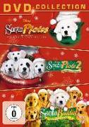 Cover-Bild zu Buddies Weihnachts-Box - Santa Pfotes grosses Weihnachtsabenteuer & Santa Pfote 2 - Die Weihnachts Welpen & Santa Buddies - auf der Suche nach Santa Pfote von Vince, Robert (Reg.)