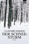 Cover-Bild zu Der Schneesturm von Sorokin, Vladimir