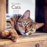 Cover-Bild zu Cats 2021 A&I INT 30x30