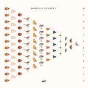 Cover-Bild zu Eulberg, Dominik (Komponist): Mannigfaltig