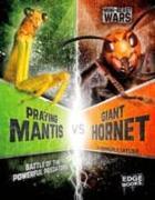 Cover-Bild zu Praying Mantis vs Giant Hornet von Klepeis, Alicia Z.