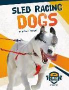 Cover-Bild zu Sled Racing Dogs von Klepeis, Alicia Z.