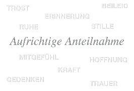 Cover-Bild zu DK Trauer 81-1394