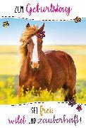 Cover-Bild zu DK Geburtstag 51-0867