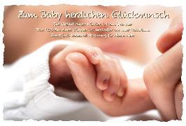Cover-Bild zu DK Ereignis Baby 31-17760